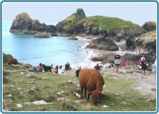 Sommerrerise Cornwall
